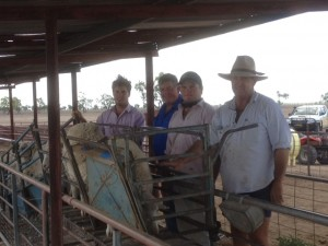 Justin, Dennis & Sam O'Brien , Cryon Station Walgett February 2014 with Classer James Koster