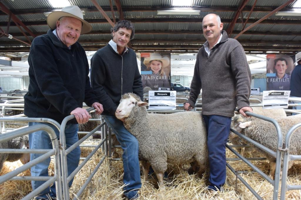 2016 Vic Sale Top Priced Ram small